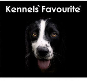 kennels-favourite