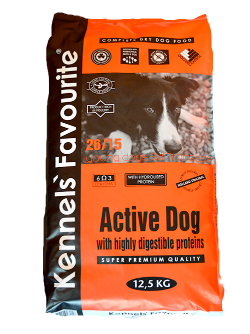 active-dog.jpg_product_product_product