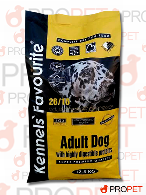 adultdog63.jpg_product_product_product